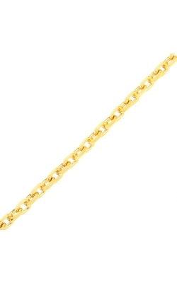 HERMAS GOLD CHAIN product image